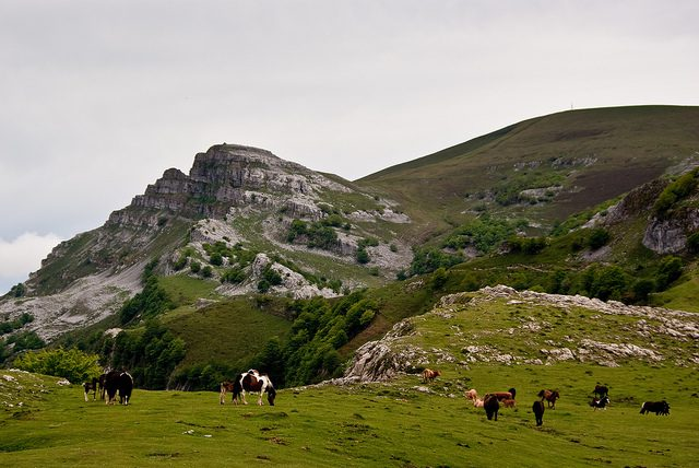 Campas de Arraba del Aldamín - Qué visitar en el País Vasco