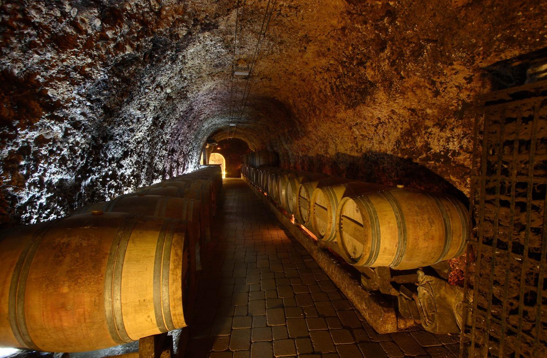 Bodega El Fabulista - Qué visitar en el País Vasco