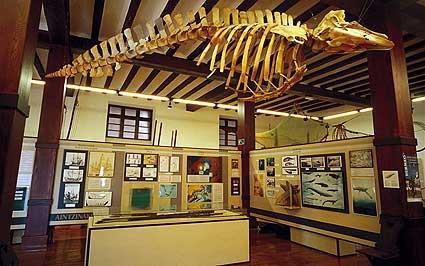 Museo del Pescador en Bermeo (Vizcaya) - Qué Visitar en el País Vasco