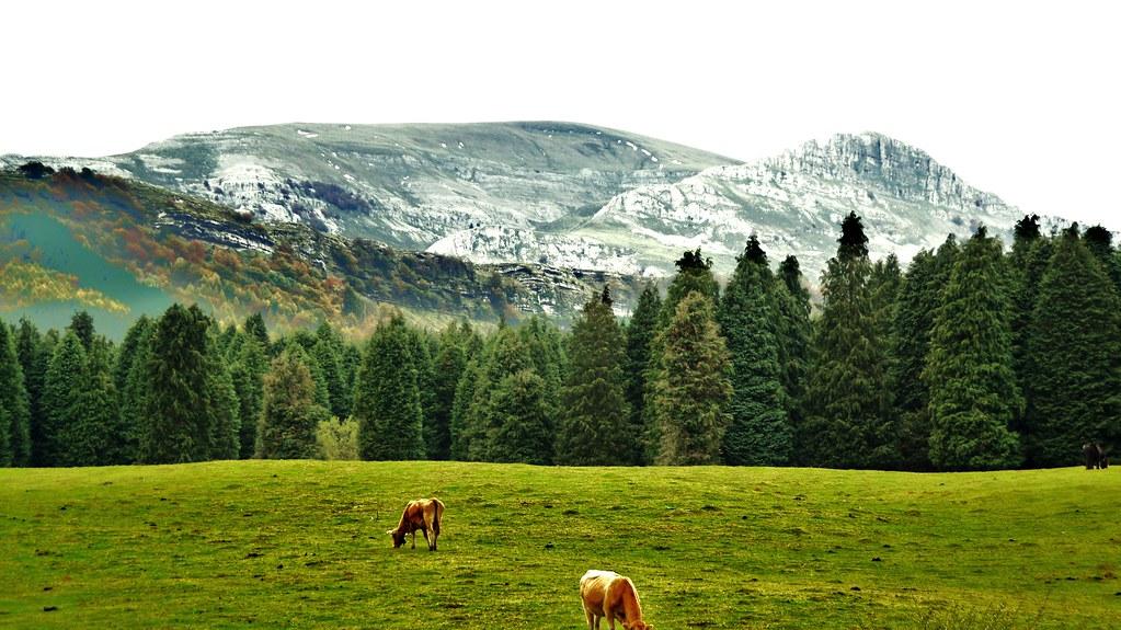 El Humedal de Saldropo - Qué visitar en el País Vasco